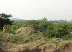 The Africa Bureau of Children's Development (ABCD) has established a Ugandan Land Sand Mining Business to fund the many ABCD initiatives in Uganda and throughout Africa.
