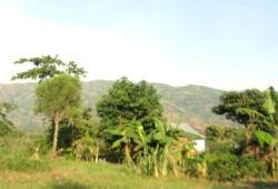 Kasese District is named after its 'chief town', Kasese.