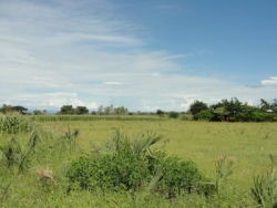 Malawi land for sale