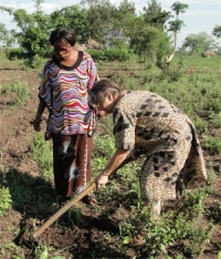 Jenny and MaMa Pinos digging a hole prior to planting the tree on the donated land